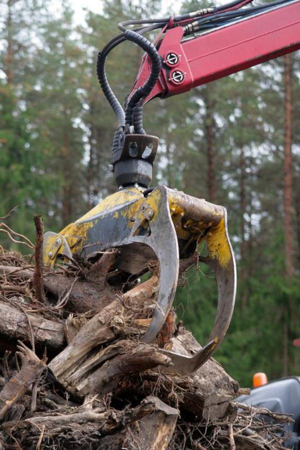 IvarsLinardsZolnerovichs2008 iStockphoto