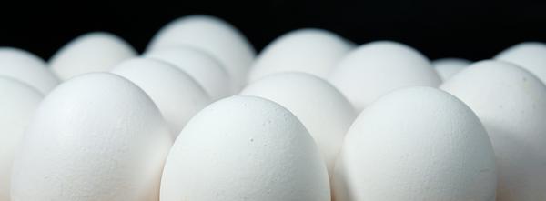 egg 2233677 1920