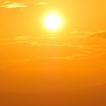 Solen og stjernerne